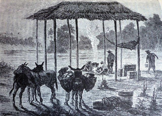 orilla del rio cauca